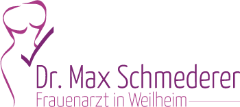 Schmederer Logo